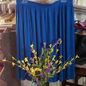 Blue pleated skirt